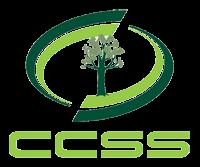LogoCCSS